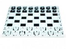 Шахматы тактильные (шашки) с применением системы Брайля